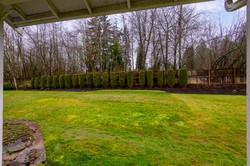 Exterior Lawn