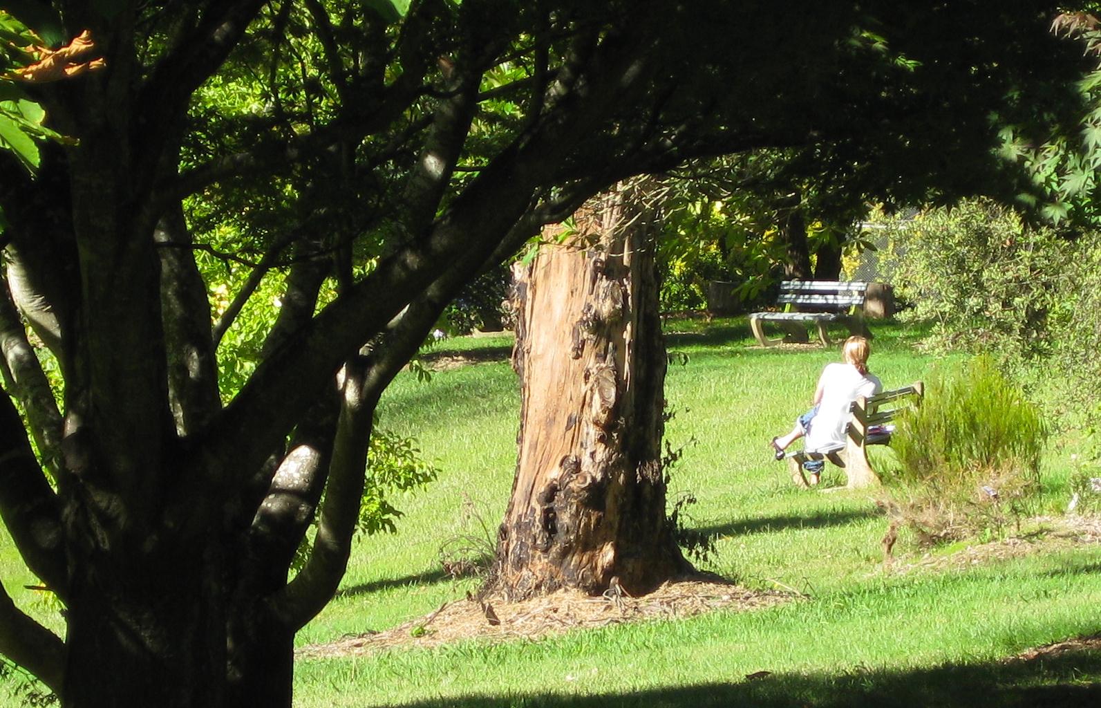 Hartzer Park Grounds