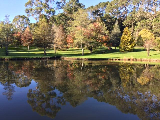 Hartzer Autumn