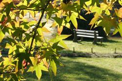 Hartzer Park Garden