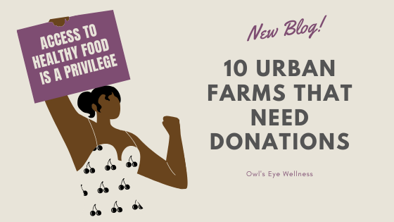 10 Urban Farms That Need Donations