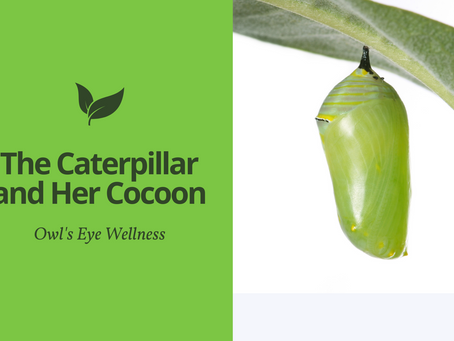 The Caterpillar and Her Cocoon