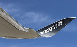 composite wing pic.jpg