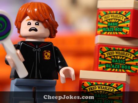 LEGO 75978 - Diagon Alley Simultaneous Speed Build