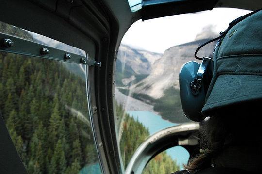 Mid Flight View