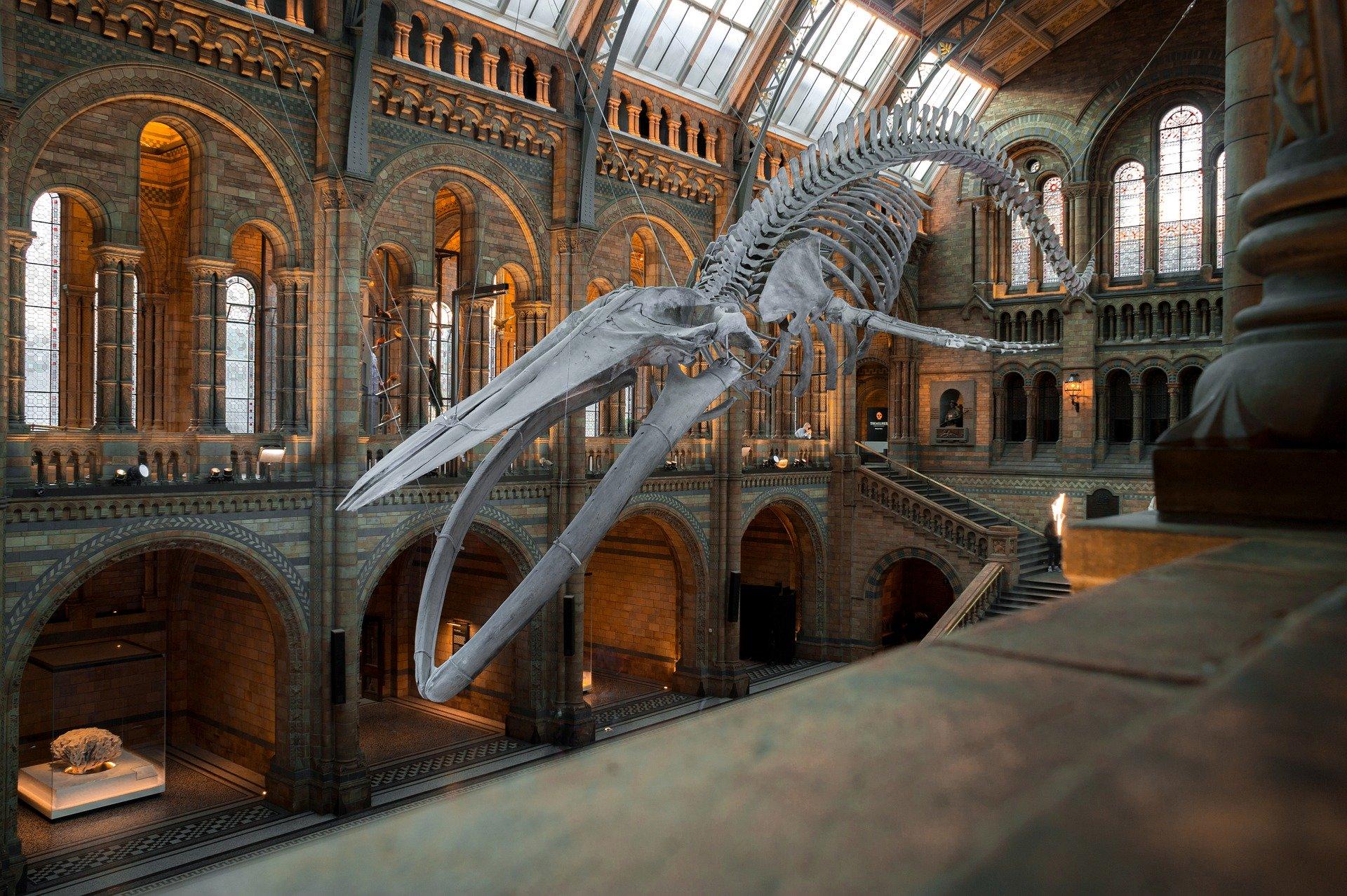 Museums_3dmellon