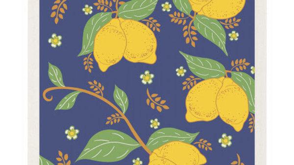Now Designs Ecologie Swedish Sponge Cloth- Provencal Lemons