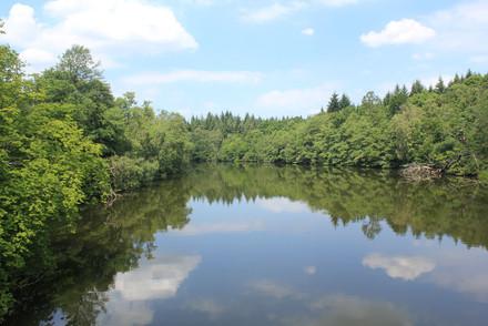 Scene - Rural Lake