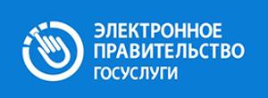 электронное правительство.png