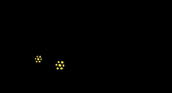 Logo_Gantrischhütte_190_x_103px_Kopie.pn