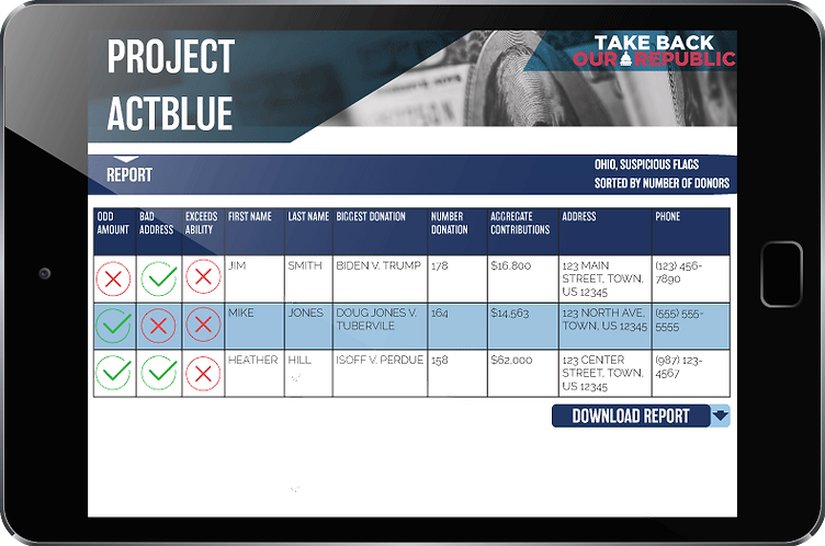 ProjectActBlue_ReportMocup.png
