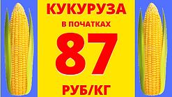 кукуруза (15).png