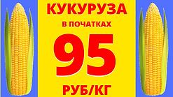 кукуруза (11).png