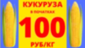 промо початки 100.png