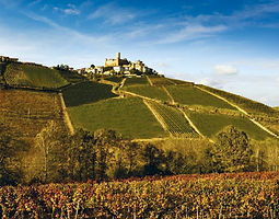 Monferrato hilltops are dominated by medieval castles and churches, most of which host very interesting music concerts in summer.