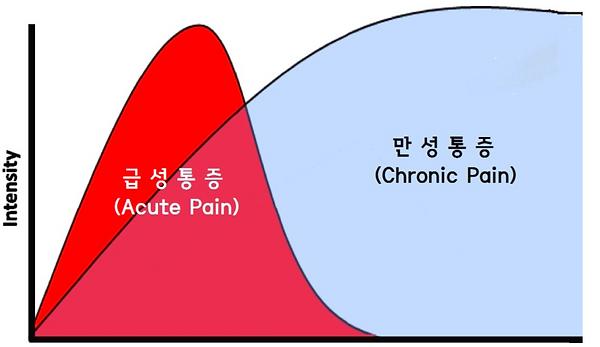 통증 그래프.PNG