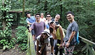 Yorkin Rainforest