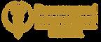 bumrungrad logo.png