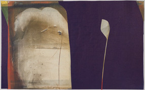 collage de monotypes sur papier de Chine marouflés sur papier Alamigeon 30 x 50 cm 2020