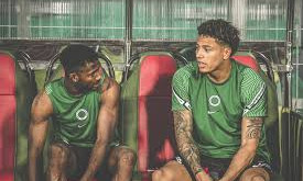 Can Maduka Okoye Regain His Place If Dropped To The Bench?