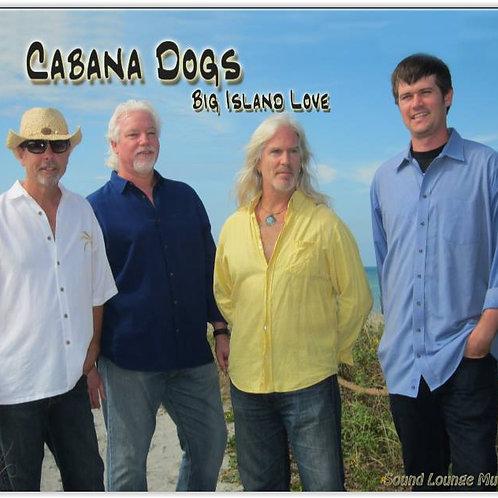 Big Island Love CD