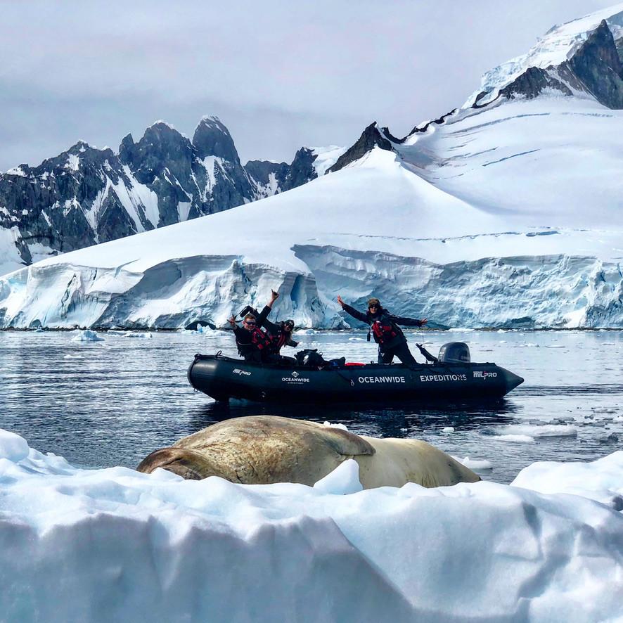 antartica-natuurgidsmeike