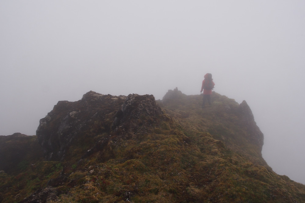 A foggy walk to Waterfall Camp meant we could take advantage of the following clear weather days (Kate Lawrence)