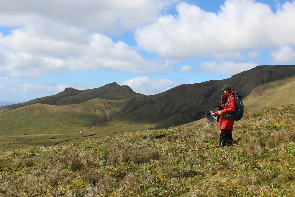 Kate gets ready to look for nests in GP valley (Jaimie Cleeland)