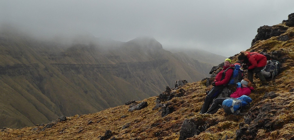 The RSPB team on a ridge, scanning the valley below for surviving albatross chicks (S.Oppel)