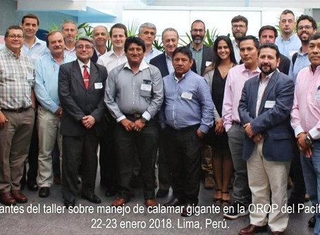 Committee for the sustainable management of the giant squid of the South Pacific created