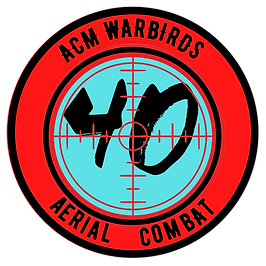 Copy of aerial patch (2).png