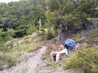 Alpine Flower a Day: Husbands load*