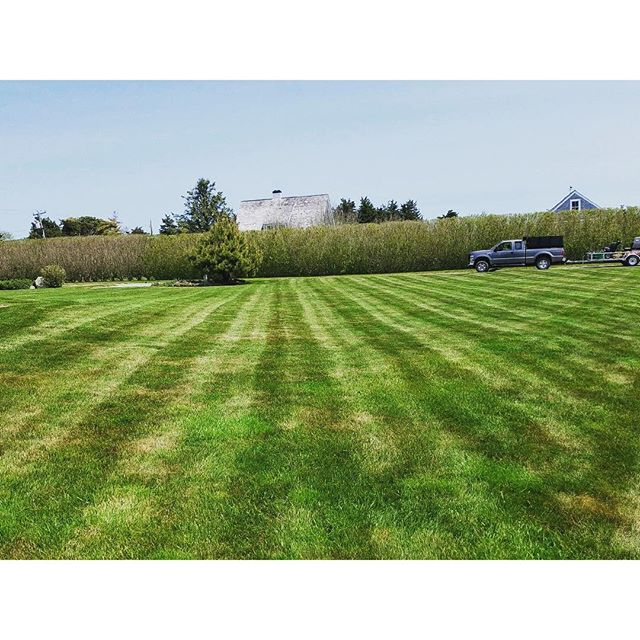 It must be Friday_ Lines for days at our East Orleans Lawns! #lawnlinesfordays #lawnlinefriday #orle