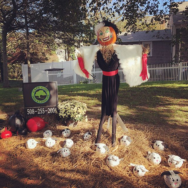 Come visit our _Pumpkin People in the Park_ along with many others at Kate Gould Park now through Ha