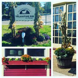 Fall plantings at Talkative Pig