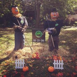 Pumpkin People 2014