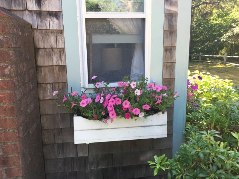Rental Property flower boxes 2015