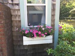 Heller flower boxes 2015