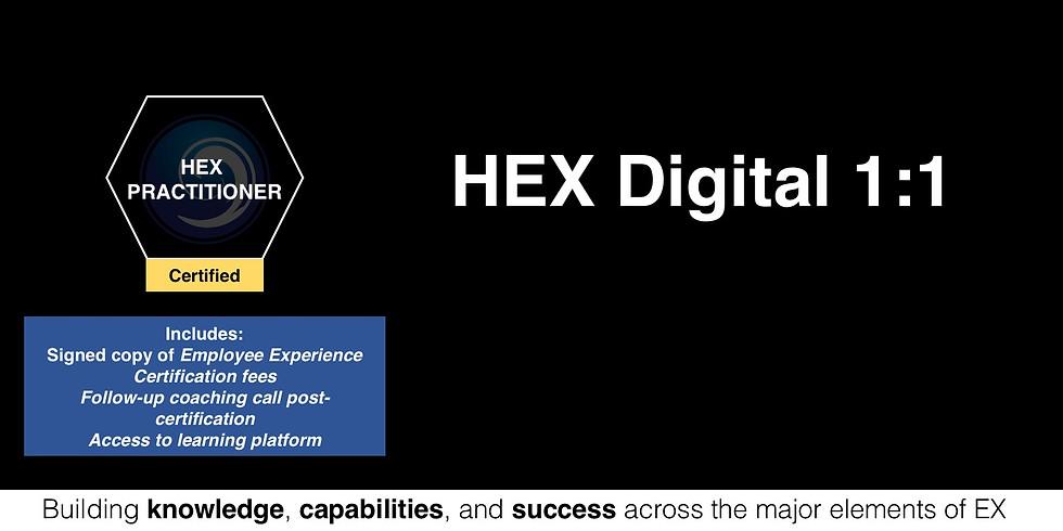 Certified HEX Practitioner Programme -  1:1
