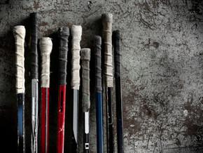 NHL Suspends Season