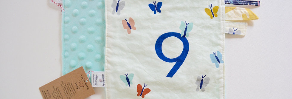 9 butterflies on sensory lovey with aqua backing