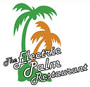 Electric Palm Logo Color.jpg