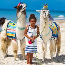 Llama Birthday.jpeg