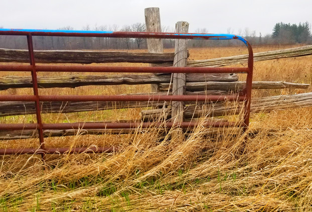 WAS A BLUE FENCE