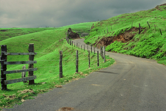 WINDING ROAD MAUII