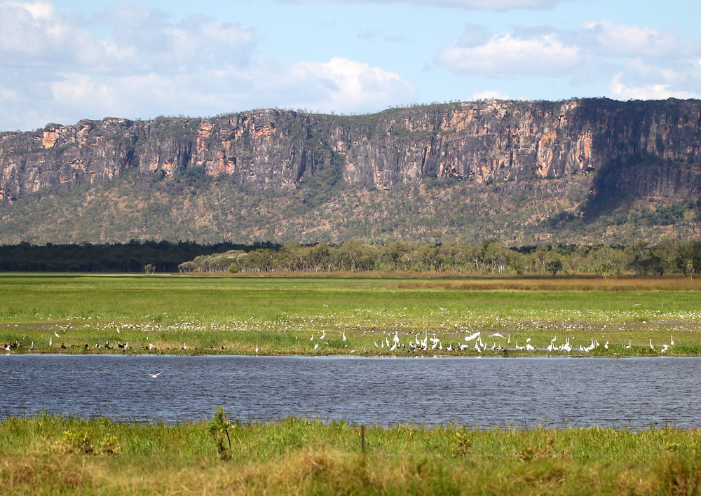 The floodplains near Gunbalayna and views of the Arnhem Land Escarpment in the Northern Territory