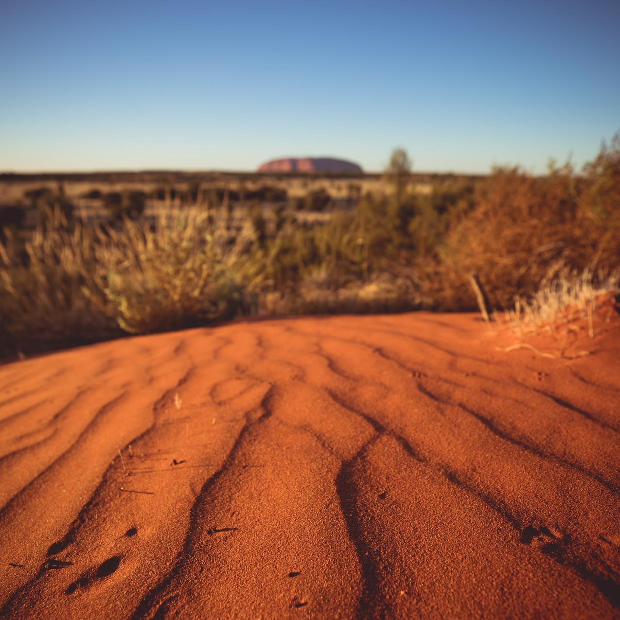 Dunes in the Uluru Landscape