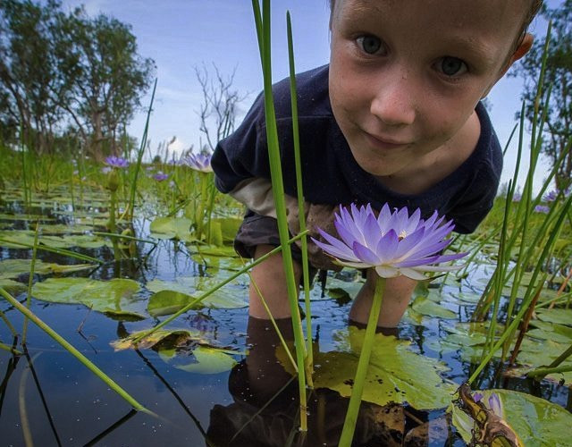 Wetlands, Northern Territory