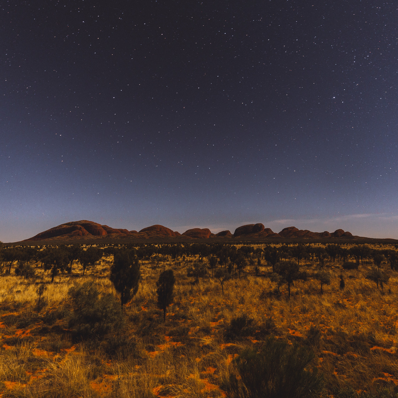 Night sky over Kata Tjuta