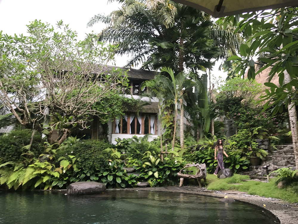The pool at the Stone House, Ubud in Bali